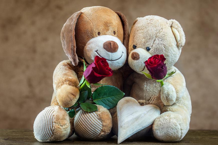 teddy-4825509_1920.jpg