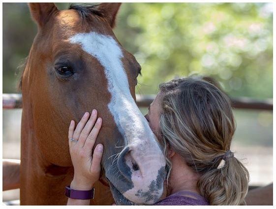 Captura caballo.JPG