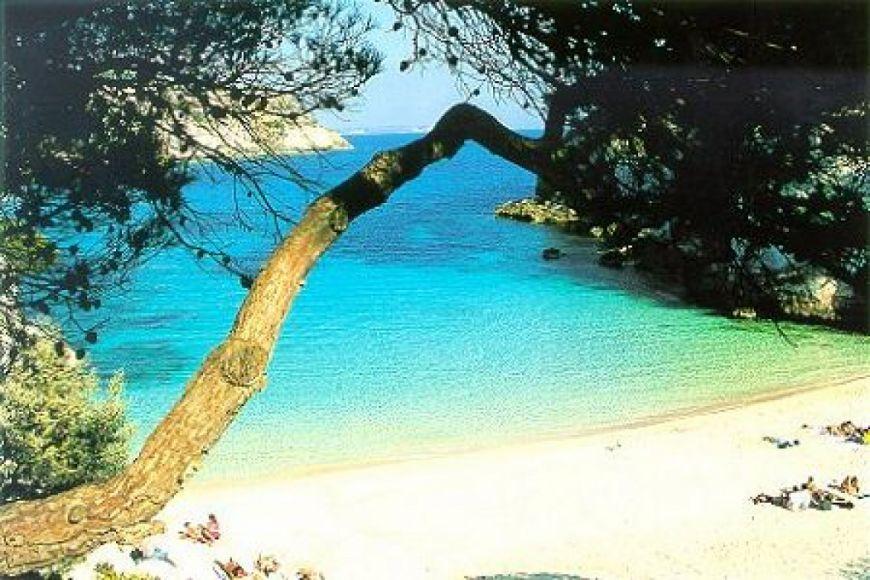 Residente Balear
